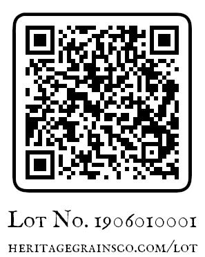 Sample of a lot QR code